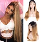 1b27 straight lace front wig