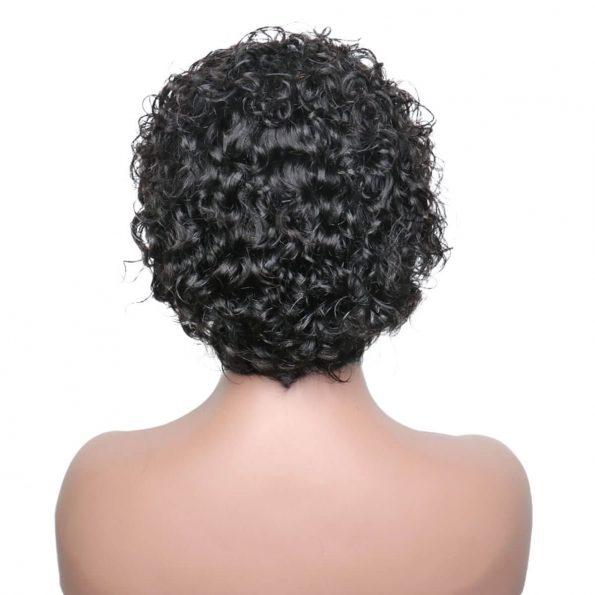 Pixie Cut Wig Short Bouncy Water Wave Lace Front Wig
